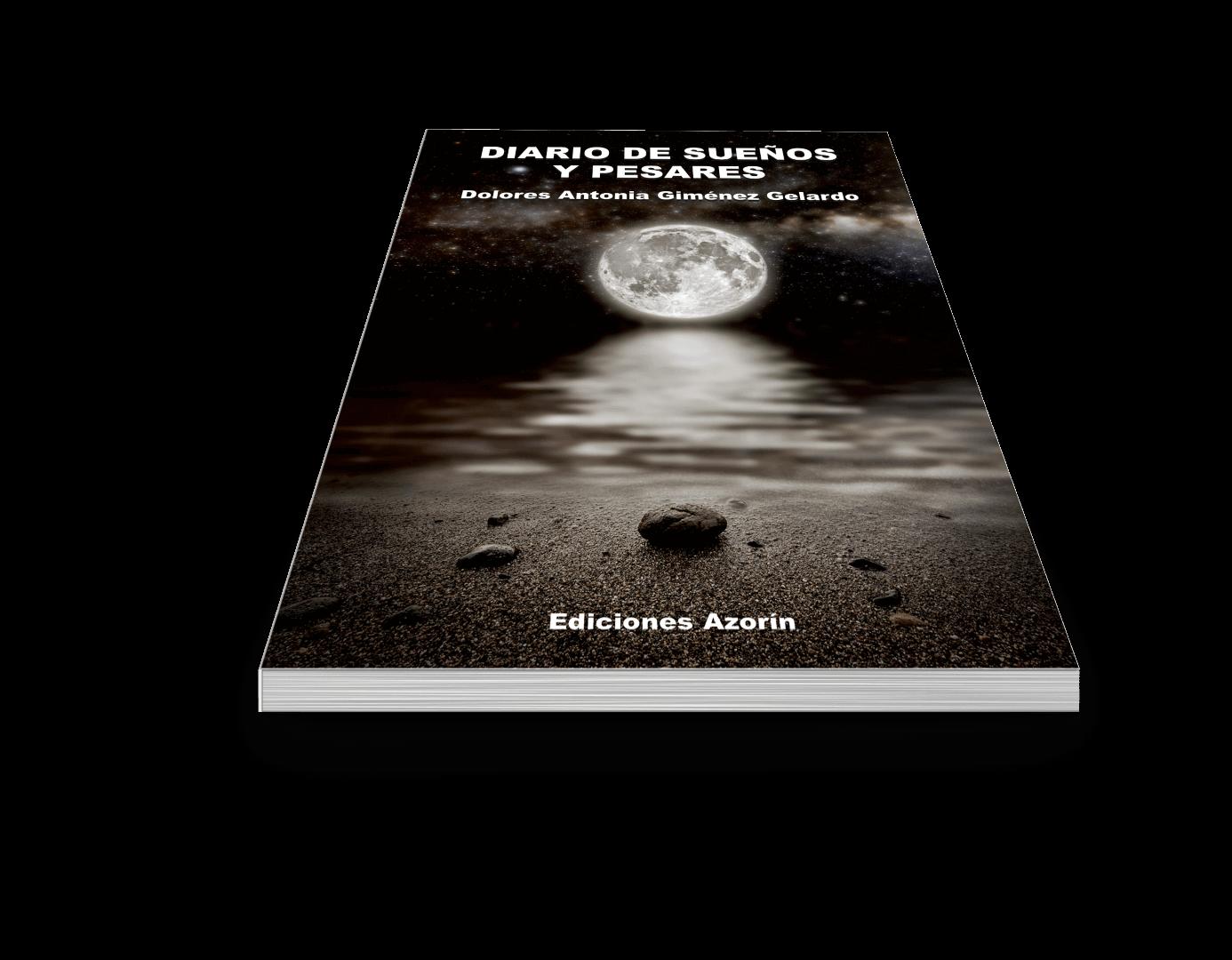 book6diariodesueños (Large)